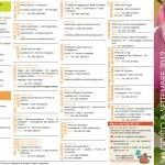 eventi valletrompia agosto e settembre 2012