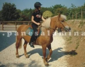 cavalli e bimbi a Passirano