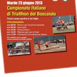 Campionato italiano di Triatlhon del Boscaiolo 2013 a Niardo
