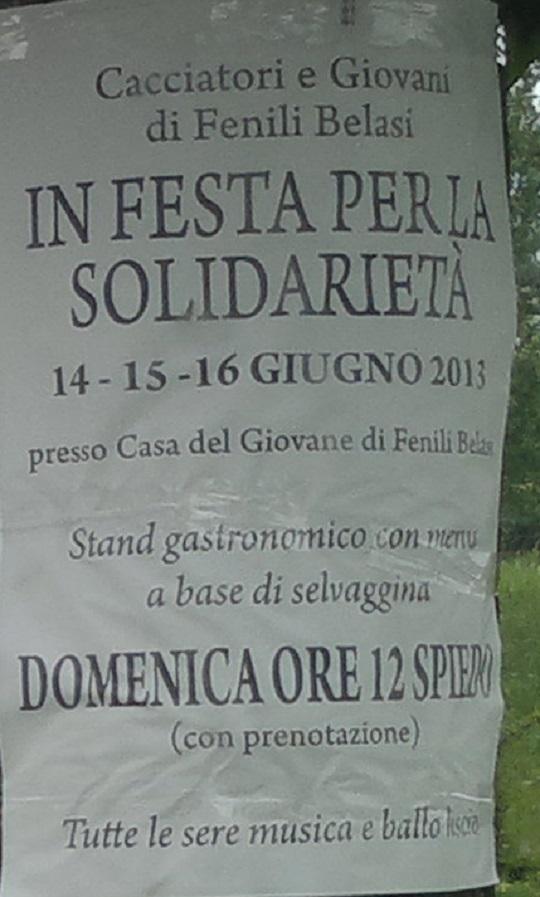 In Festa per la solidarietà Fenili Belasi 2013