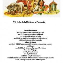 VIII festa della Mietitura a Pontoglio