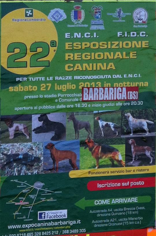 esposizione regionale canina a Barbariga