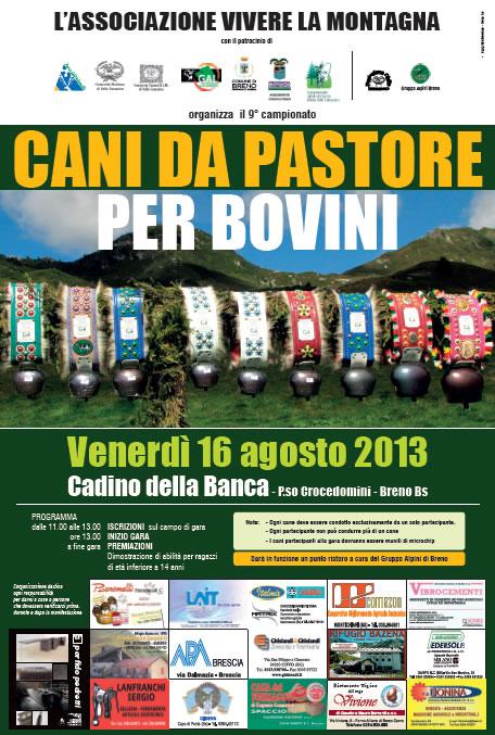 Campionato Cani da Pastore per Bovini a Breno