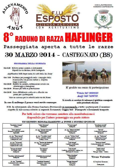 8 Raduno di Razza Haflinger a Castegnato