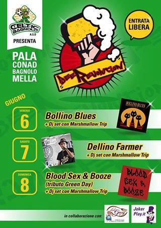 Beer Revolution 2014 Bagnolo Mella