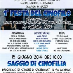 Festa del Cinofilo a Castelcovati