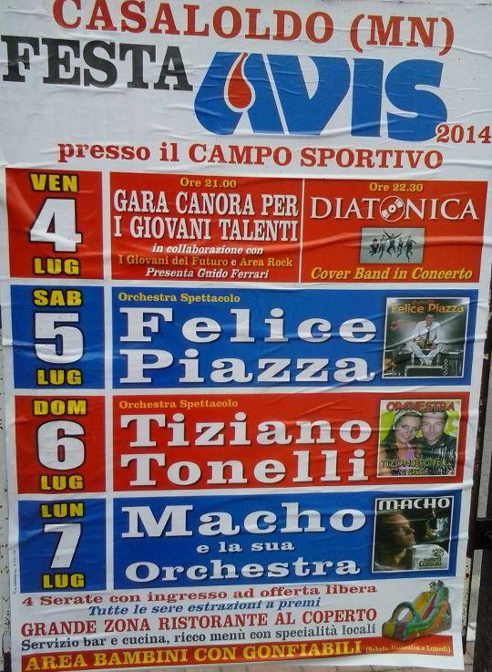 Fest Avis a Casalmoro (Mn)
