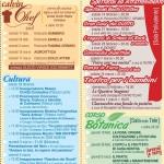 Fiera Agricola di Calvisano e Sagra della Beata Cristina 2015 allegato (3)