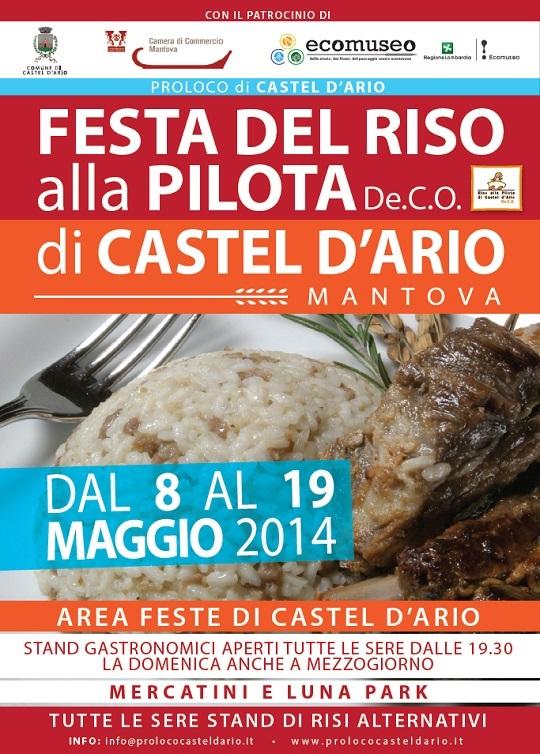 Festa del riso alla Pilota 2015 Castel d'Ario (MN)