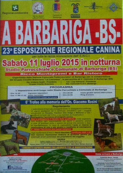23 Esposizione Regionale Canina a Barbariga
