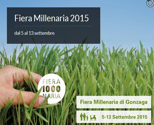 Fiera Millenaria 2015 a Gonzaga MN