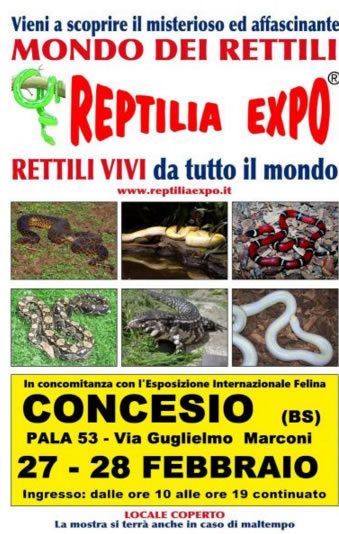 Reptilia Expo a Concesio