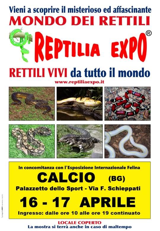 Reptilia Expo a Calcio BG