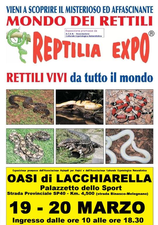 Reptilia Expo a Lecchiarella MI