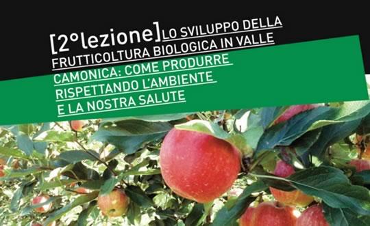 Sviluppo della Frutticoltura Biologica a Piamborno