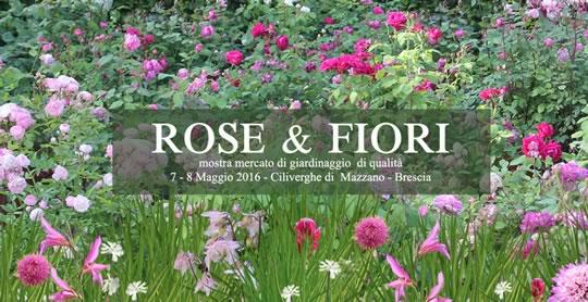 Rose e Fiori a Ciliverghe di Mazzano