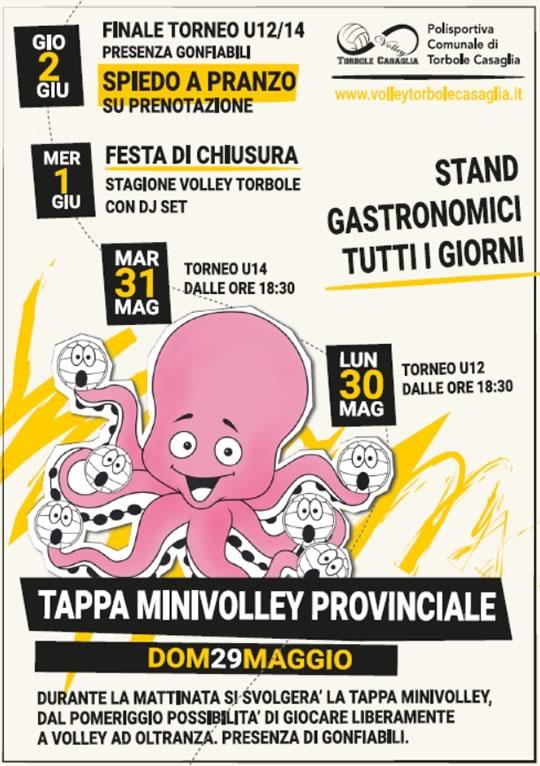 Tappa Minivolley Provinciale a Torbole Casaglia