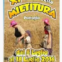 11 Festa della Mietitura a Pontoglio