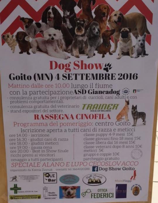 Dog Show a Goito MN