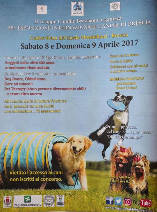 55 Esposizione Internazionale Canina a Montichiari