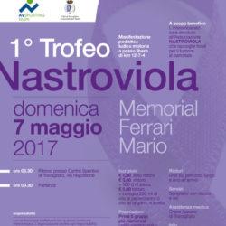 Trofeo NastroViola a Travagliato