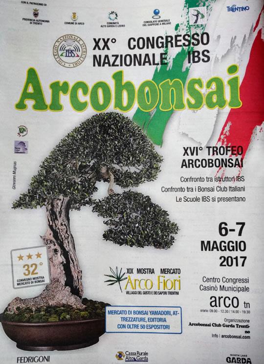 Arcobonsai