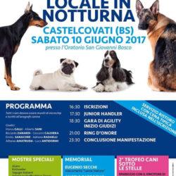 Expo Canina Locale in Notturna a Castelcovati