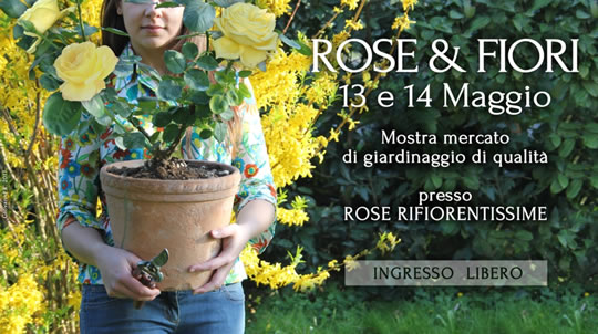 Rose e Fiori a Ciliverghe