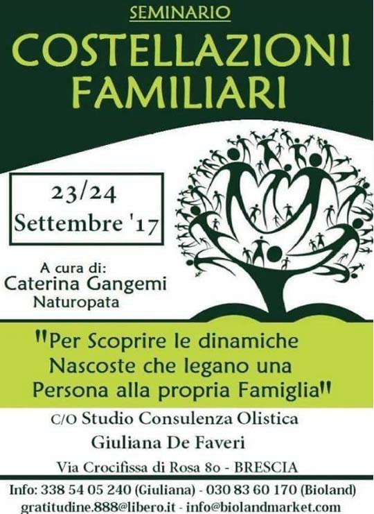 Seminario Costellazioni Familiari a Brescia