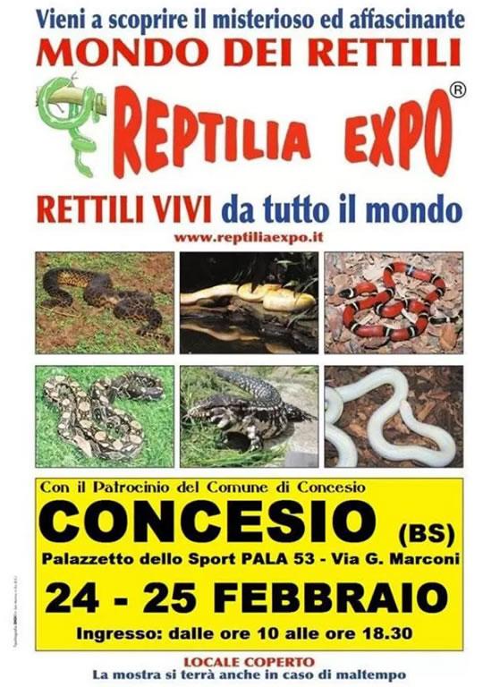Reptiia Expo a Concesio