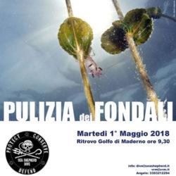 Pulizia dei Fondali a Toscolano Maderno