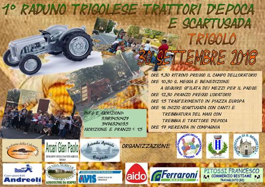Raduno trattori d'epoca e scartusada a Trigolo CR