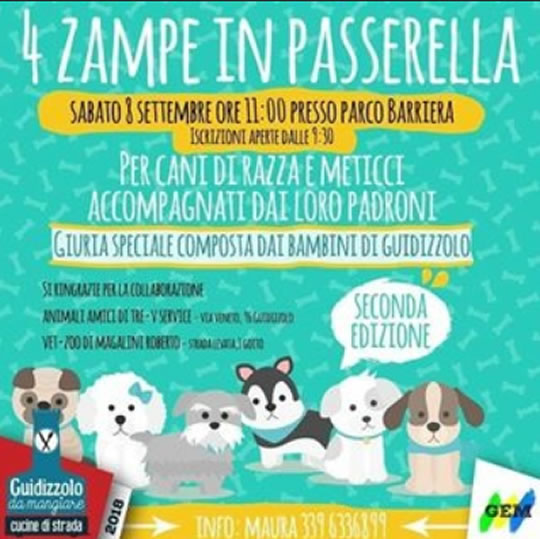 4 Zampe in Passerella a Guidizzolo