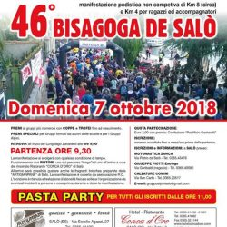 46 Bisagoga de Salò