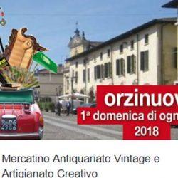 Mercatino Antiquariato Vintage e Artigianato Creativo a Orzinuovi