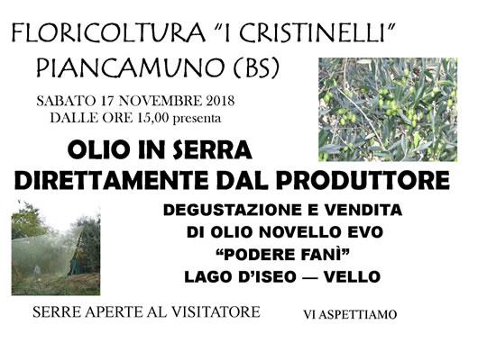 Degustazione e vendita olio novello del lago d'Iseo a Piancamuno