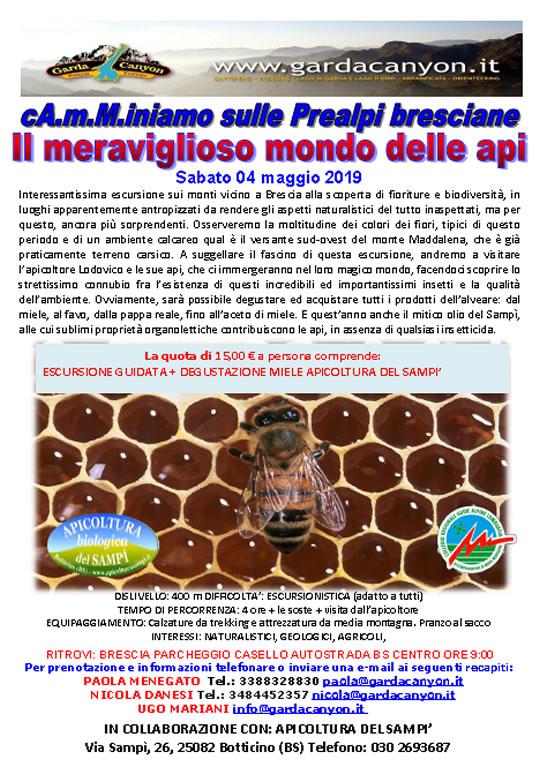 Il meraviglioso mondo delle api a Botticino