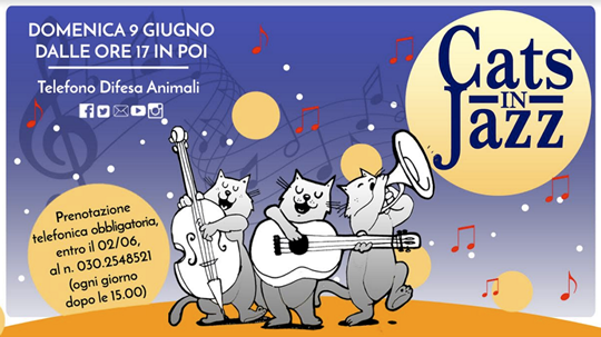 Cats in Jazz - Apericena Solidale a Capriano del Colle