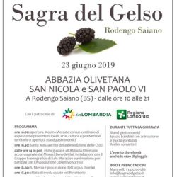 Sagra del Gelso a Rodengo Saiano