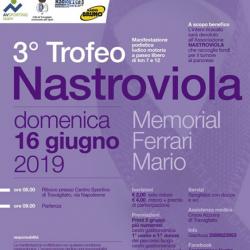 Trofeo Nastro Viola a Travagliato