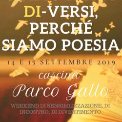 Siamo fatti di-versi, perché siamo poesia a Brescia