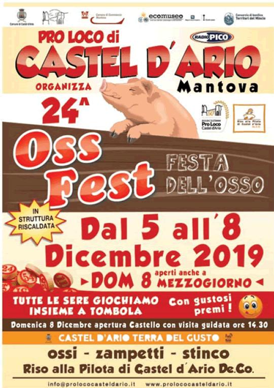 Oss Fest a Castel d'Ario MN