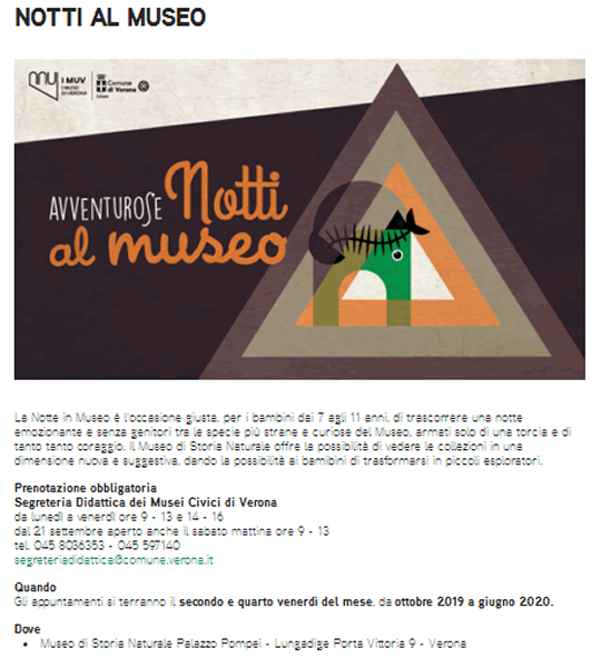 Notti al Museo a Verona