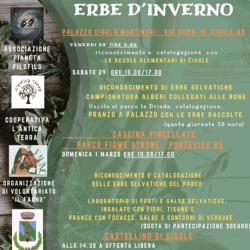 Riconoscimento delle erbe spontanee per uso culinario e officinale a Cigole