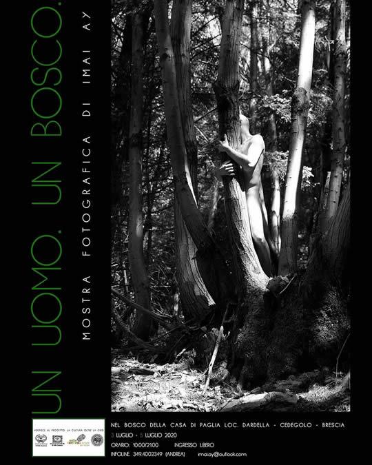mostra un uomo un bosco